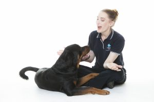 Helen asks dog about animal physiotherapy
