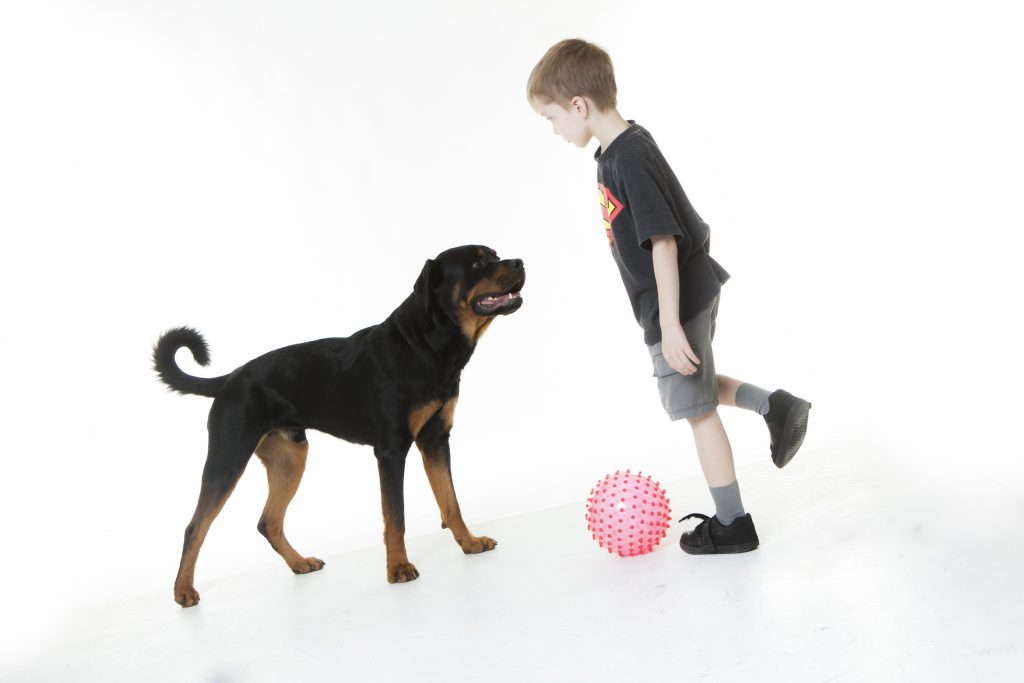Ronan and Linc playing with the ball
